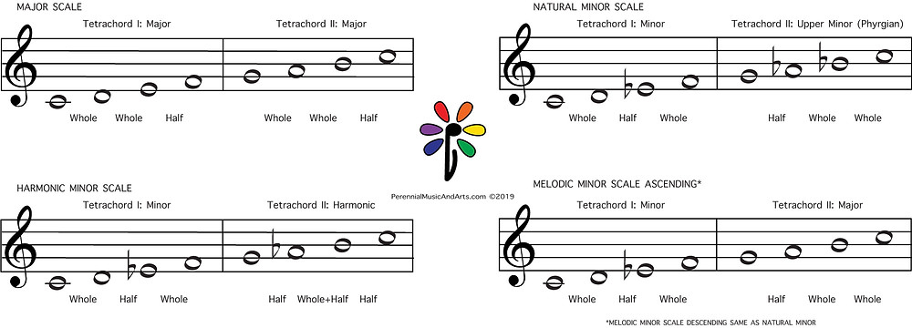 "Western major and Minor Scales are built of tetrachords. When two tetrachords are linked together to create a scale, they are referred to as ""Tetrachord I"" and ""Tetrachord II"" respectively."