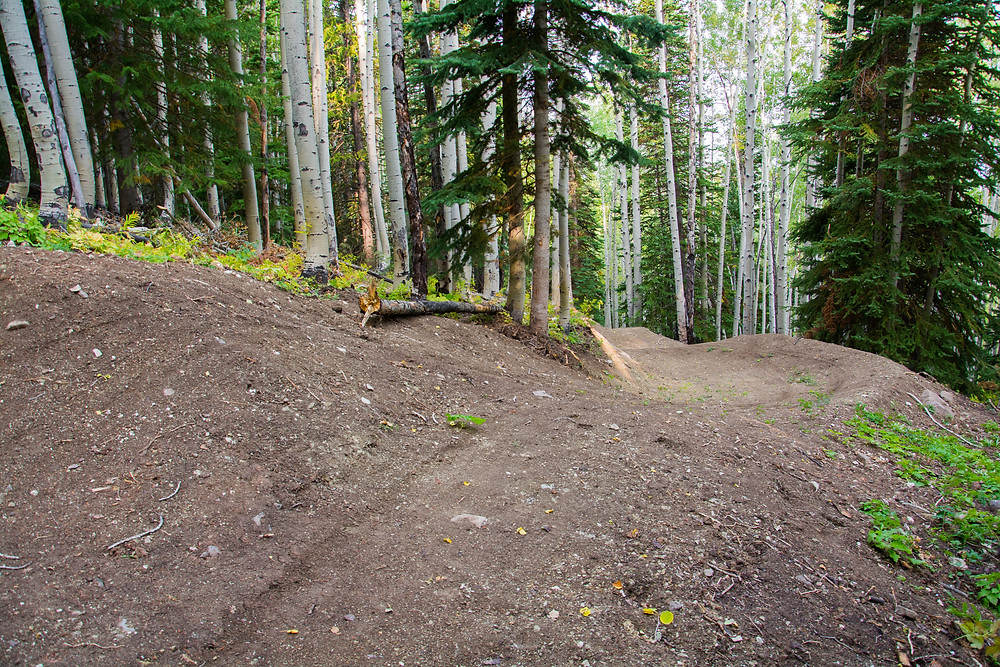 mountain bike jump with berm and forest in background