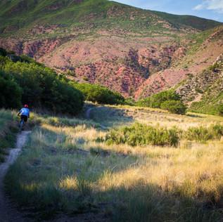 singletrack-trails-south-canyon-glenwood-springs-1.jpg