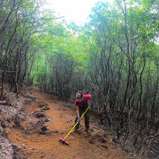singletrack-trail-middle-black-mountain-12.jpg
