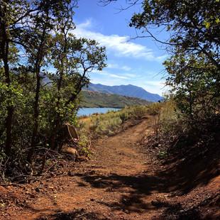 singletrack-trails-mormon-pioneer-1.jpg