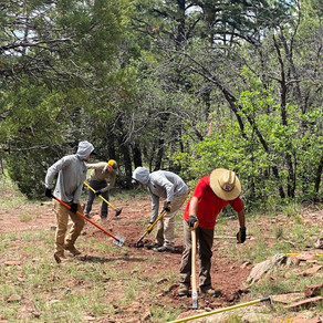 Milk Ranch Trails See Rehab & Reconstruction