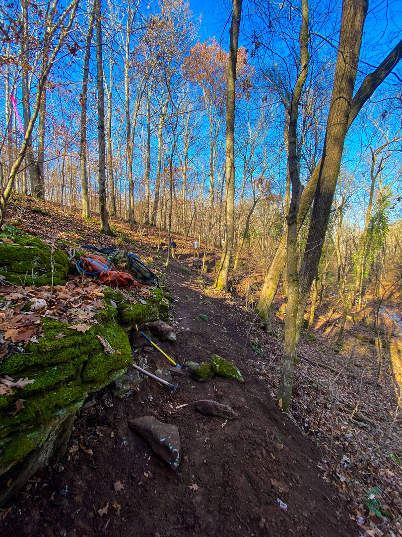 singletrack-trails-handcut-hollow-2.jpg