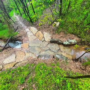 singletrack-trails-handcut-hollow-5.jpg