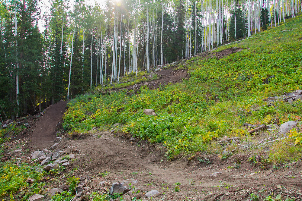 mountain bike switchbacks and berms