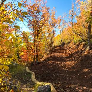 singletrack-trails-mormon-pioneer-6.jpg