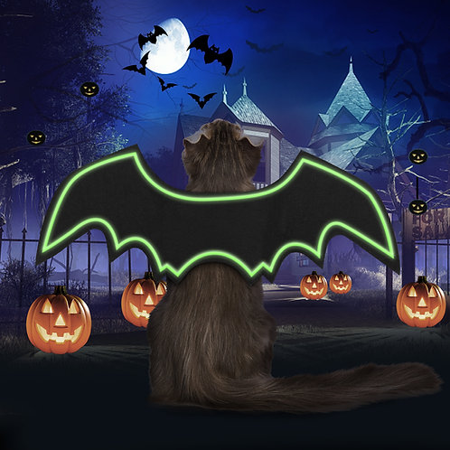 Cat Bat Wings