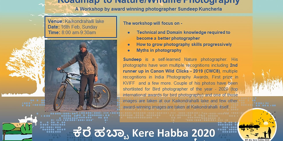 Roadmap to Nature Photography