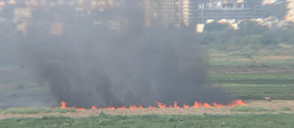 Waste Burning in Buffer Zone