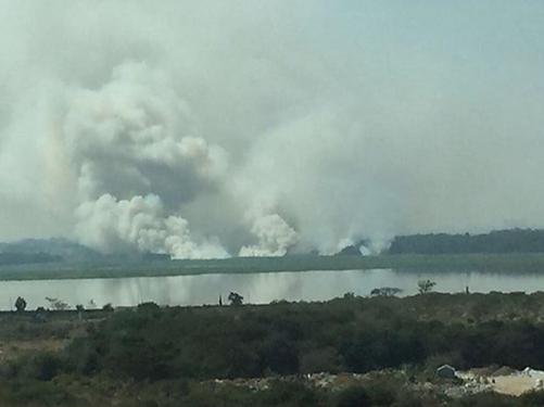 Smoke and fire nea Bellandur Lake