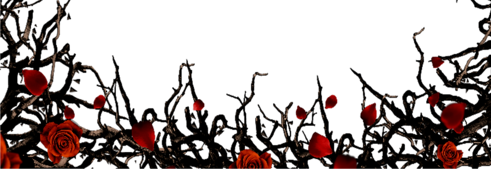 gothic-border-12_edited_edited.png