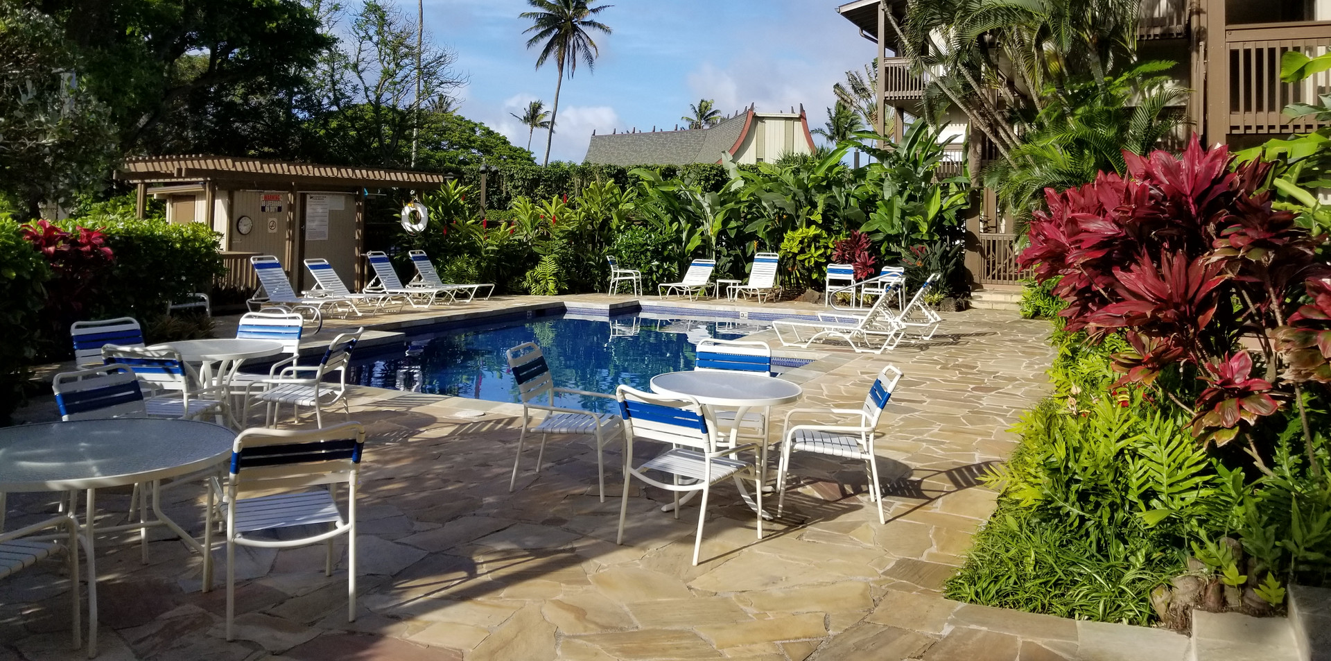 Recently Remodeled Pool Area