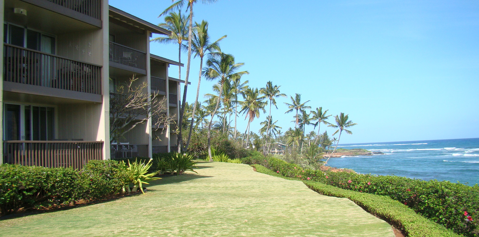 Oceanfront Back Lawn