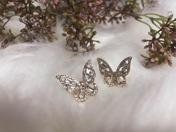 Adonis Butterfly Studs Earrings