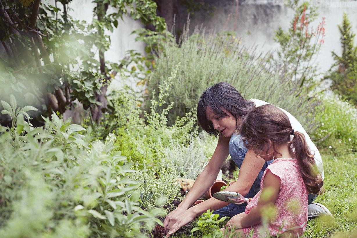 Los niños en el jardín