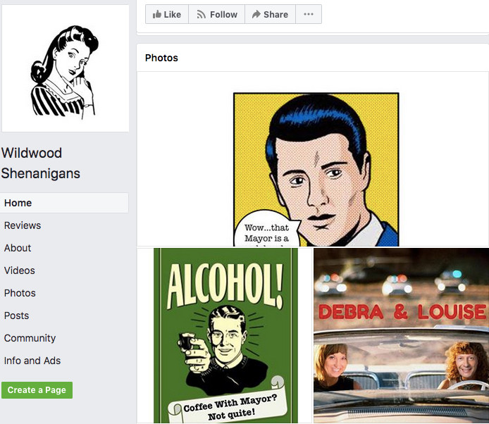 SCREEN SHOT: Council Woman Shea's Shenanigans Facebook page