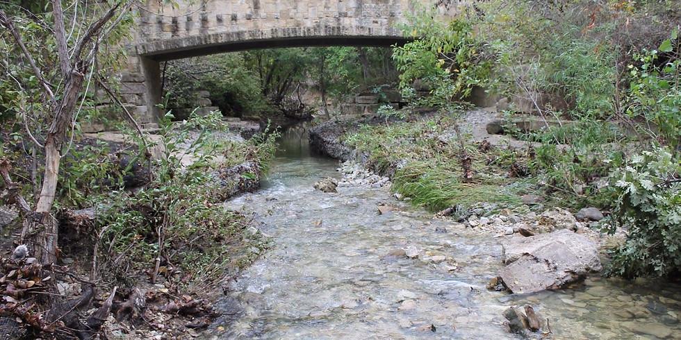 Arbor Hills Nature Preserve Hike!