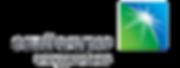 SAEV Logo stenciled.png