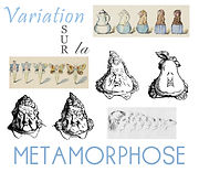 variation metamorphose.jpg
