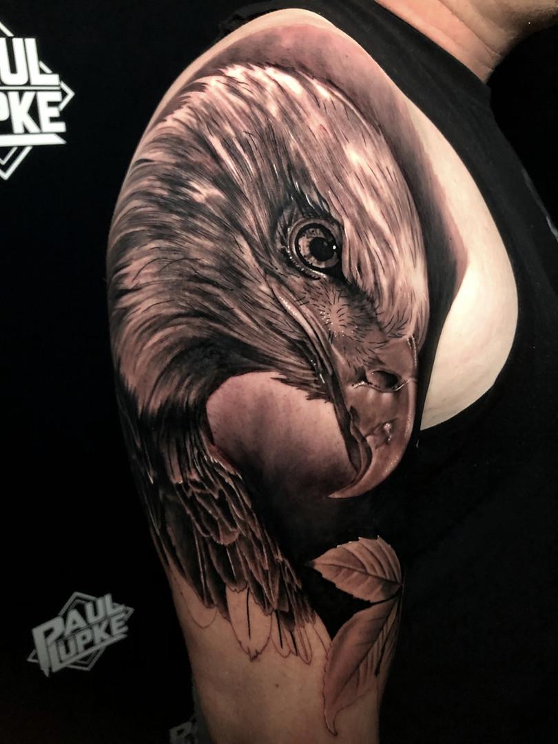 Eagle Arm.jpg