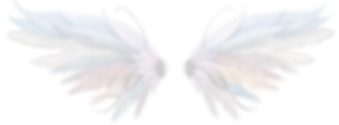 Wings%20no%20background%20sm_edited.png