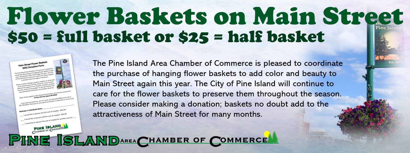Flower Baskets on Main