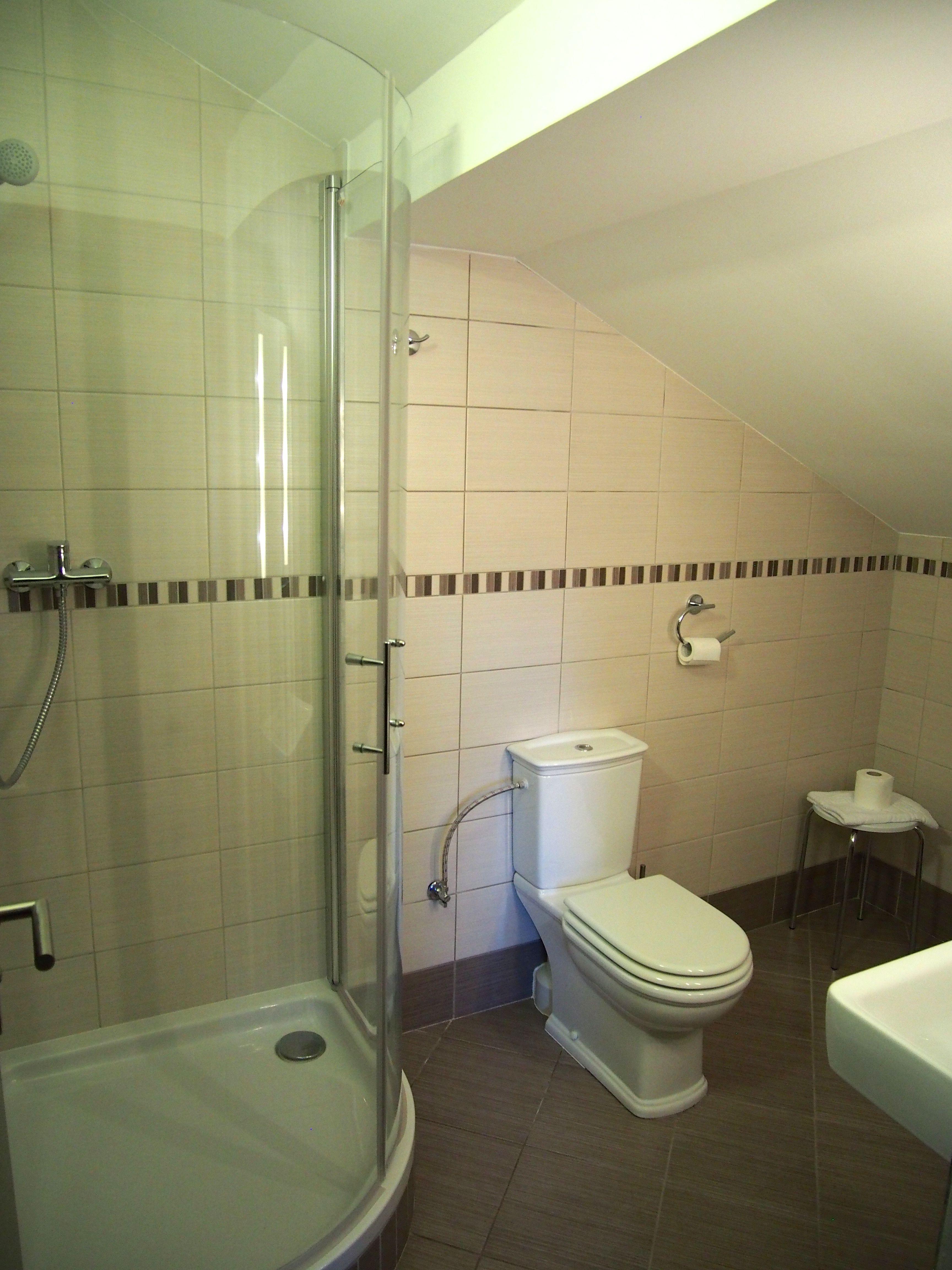 pok-podkrovi-wc