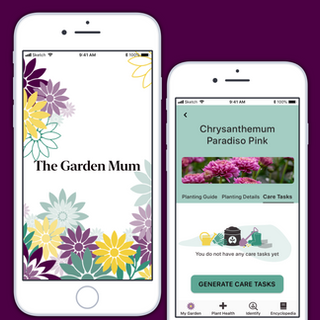 Plant Identification and Care App