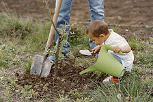 family-with-with-little-sons-are-plantin