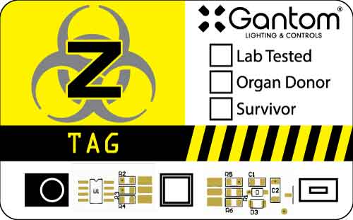 ZTag_Whole-Gantom