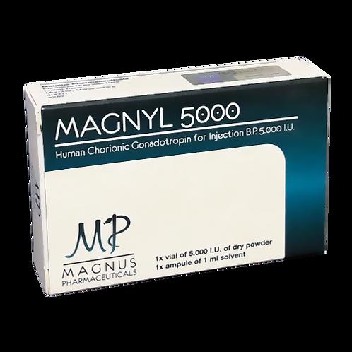 Magnyl