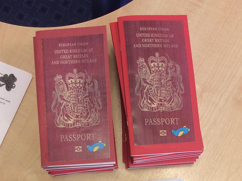 Flying with Phonics Passport Of sounds and key words  Pack