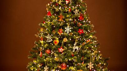 Christmas Tree Wax Melt