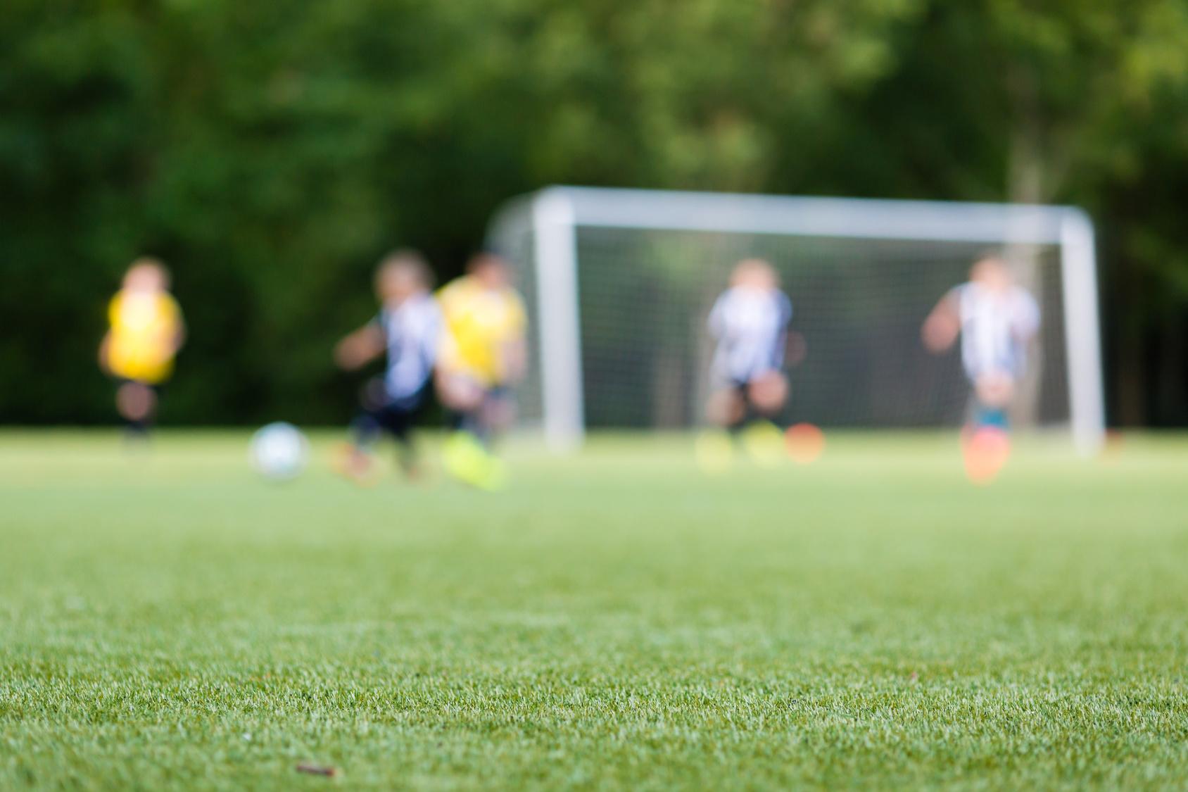 GrassFloor Football
