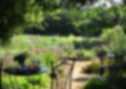 herbgarden2013.jpg