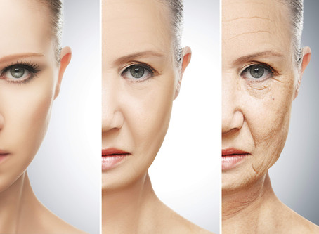 The Anatomy of the Aging Face