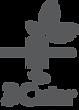 3cular_logo_gray_original.png
