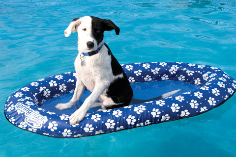 """""""Paddle Paws"""" Raft for pets"""