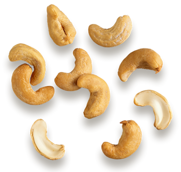 kisspng-cashew-hazelnut-dried-fruit-clip-art-nuts-5abd66e5a5fca0.8631959415223620856799.png