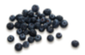 purepng.com-group-of-blueberriesfruitsblueberriesberryberriesblueberry-981524760612n4hqj.png