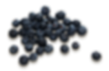 purepng.com-group-of-blueberriesfruitsbl