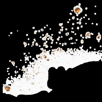 crumbs (1).png