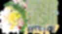 FFK_Header_Logo.png