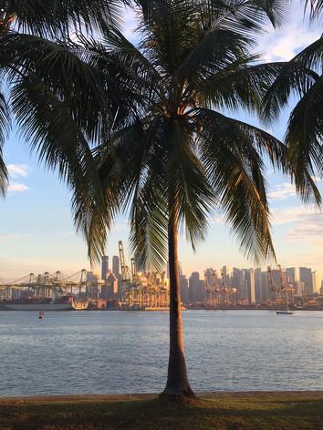 Sonnenkind Learning Journey - SINGAPORE