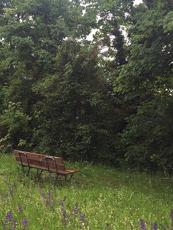 Site bench 2 Kopie.jpg