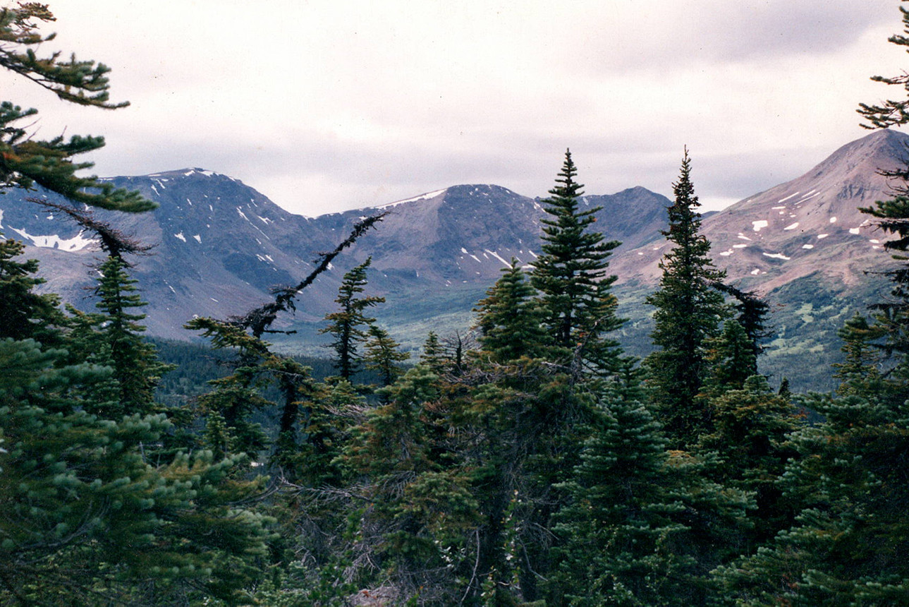 Looking out over the Yukon.