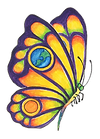butterfly orly_edited.png