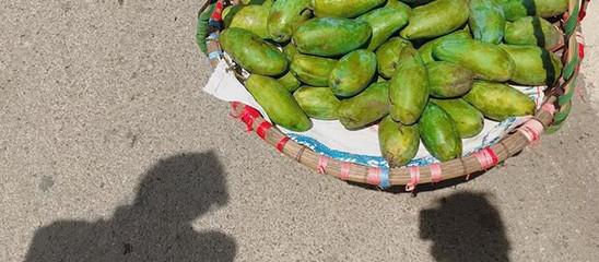 Vietnam, Fruit Heaven