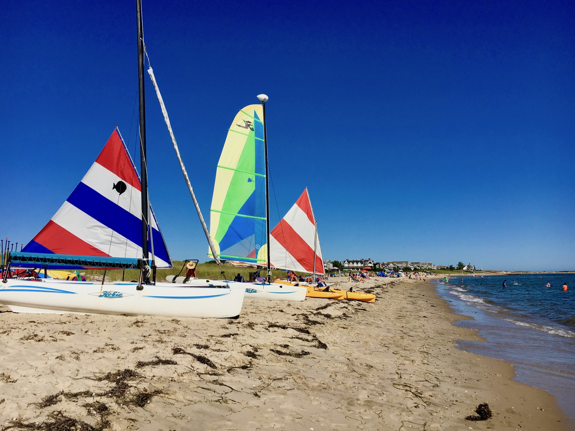 hobie-wave-sailboats-chatham-ma-rentals-lessons-tours