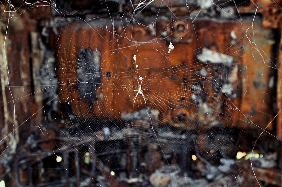 spider burnt out truck.jpg